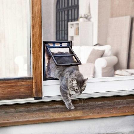 hordeur kattenluik