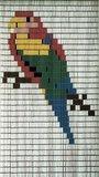 Vliegengordijn bouwpakket papegaai 90x210cm_